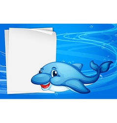 A dolphin beside an empty paper under the sea vector image