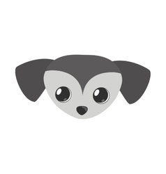 small dog face gray pet icon vector image vector image