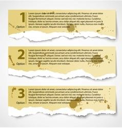 Vintage torn paper progress option labels vector image