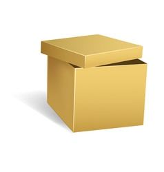 cardboard box with opened lid vector image vector image