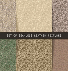 Set of seamless leather textures vector image