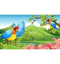 Two colorful parrots in a mountain scenery vector image