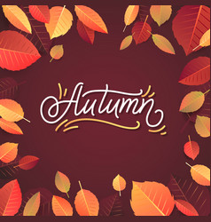 autumn lettering hand written typography on white vector image