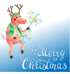 Funny pig with sparklers christmas greeting vector