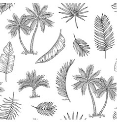 Palm tree seamless background tropical coconut vector