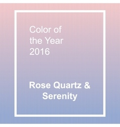 Rose quartz and serenity - trendy fashion color of vector