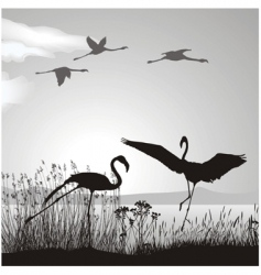 flamingo silhouettes vector image vector image