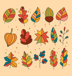 autumn fall forest leaves design element vector image