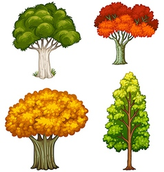 Four trees with different colors vector