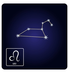 Icons with Leo zodiac sign and constellation vector
