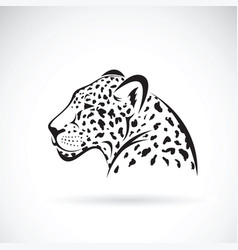 Leopard on white background wild animals vector