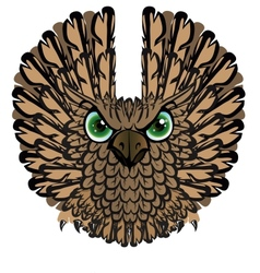 Nocturnal birds of prey Owl vector