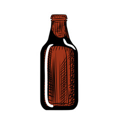 Stout beer bottle engraving style hand drawn vector