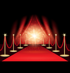 The red carpet vector