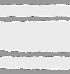 white horizontal torn paper stripes vector image