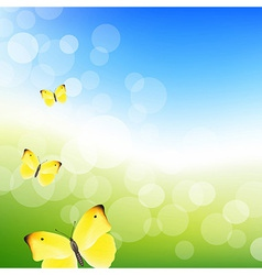 Blue Sky And Butterfly vector image vector image