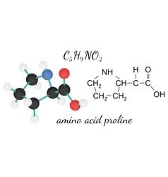 C5H9NO2 proline amino acid molecule vector