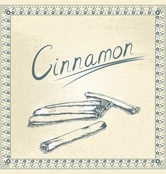 Vintage cinnamon vector