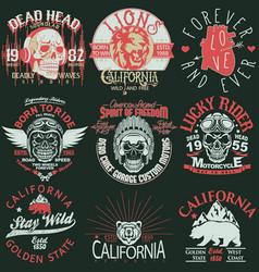 t-shirt stamp graphic set california sport wear vector image