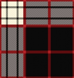 tartan black and red vector image