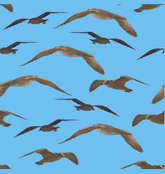 Birds gulls seamless vector