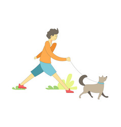 Dog on leash with owner boy walking pet vector