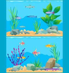 Fish underwater scape set vector