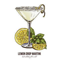 Lemon drop martini with mint leaves vector