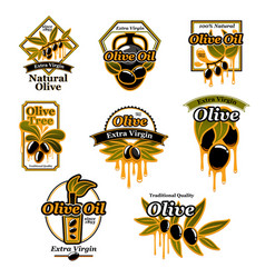 olive oil premium product trademark label set vector image