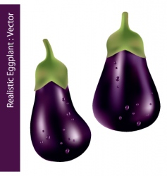 realistic eggplant vector image