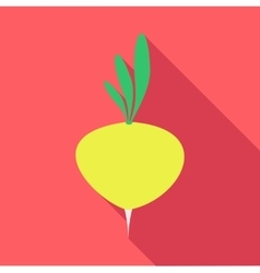 Turnip vegetable icon flat style vector