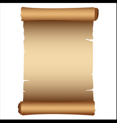 ancient scroll vector image