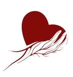 Heart logo vector