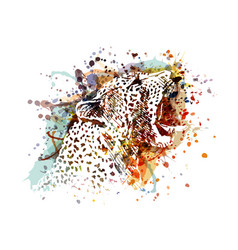 Color a leopard head vector
