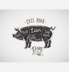 graphic silhouette of a pig with the line of vector image