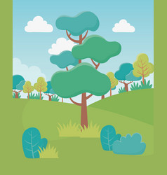 Landscape trees field bushes foliage nature vector