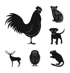 realistic animals black icons in set collection vector image
