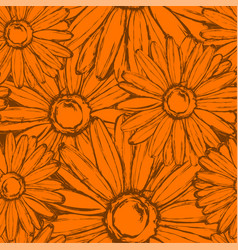 Seamless pattern of flowers marigold vector