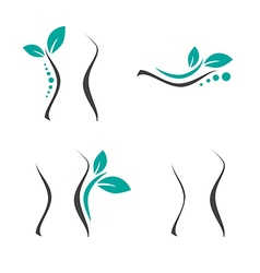 Woman Surgery and Chiropractic Logo vector image