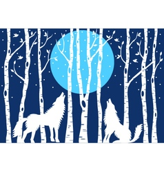 Howling wolf with birch trees vector image vector image