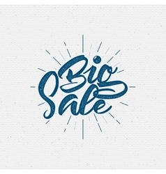 Big Sale insignia and labels for any use vector