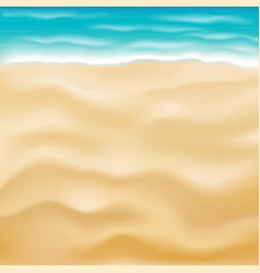 real bright sea sand beach background vector image