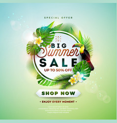 summer sale design with flower toucan and exotic vector image