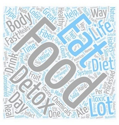 The perfect diet anyone text background wordcloud vector image