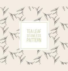 tea leaves seamless pattern drawn organic vector image vector image