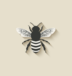 bee insect icons vector image