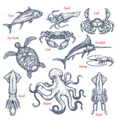 sea animal isolated sketch set of seafood and fish vector image