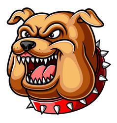 Angry head mascot bulldog vector