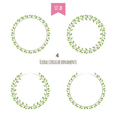 floral circular ornaments third set vector image