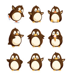Penguin animal with wings smooth feathers bird vector